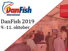 Dan Fish International